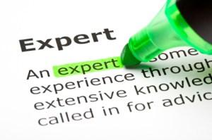 An Expert Resume
