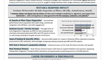 Chief Revenue Officer Sample Resume Premium Executive Resume