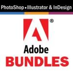 Bundled Microsoft Office Plus Adobe Training Classes