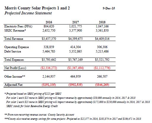 Projected Profit & Loss Statement PDF