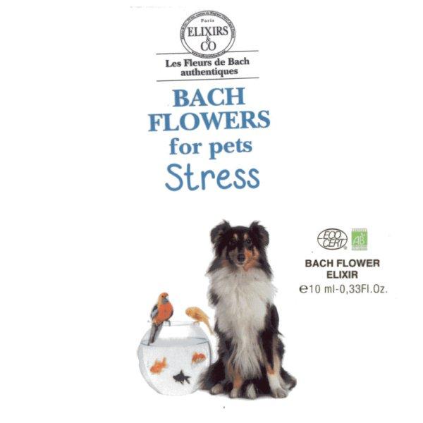 Ex Florum Stressed pets remedy