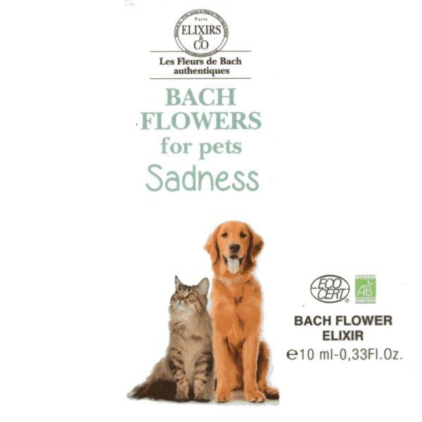 Exflorum Sad pets single remidy