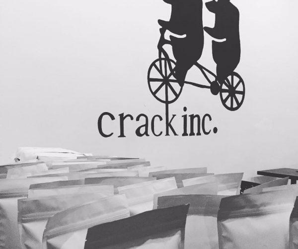 Crack_ink_1