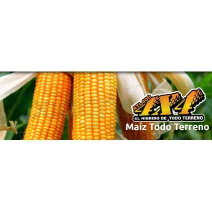 MAIZ ATL 400 exiagricola