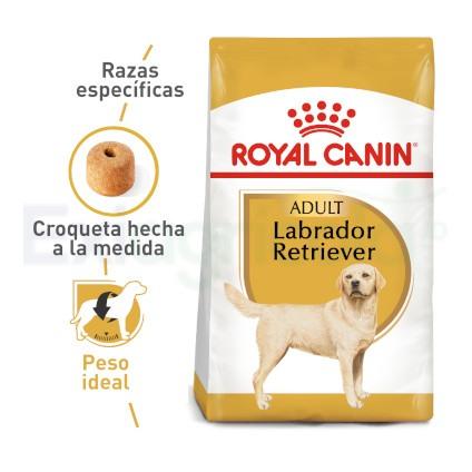 ROYAL CANIN LABRADOR ADULTO