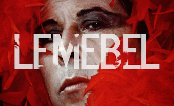 "Resultado de imagen para ""Lemebel"", de Joanna Reposi"