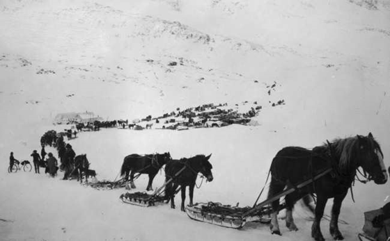 Mail and freight on Valdez Summit – Frank and Frances Carpenter Collection — Lib. of Congress Prints and Photographs Division