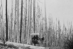 Traveling Yellowstone 1898 (lower-right)