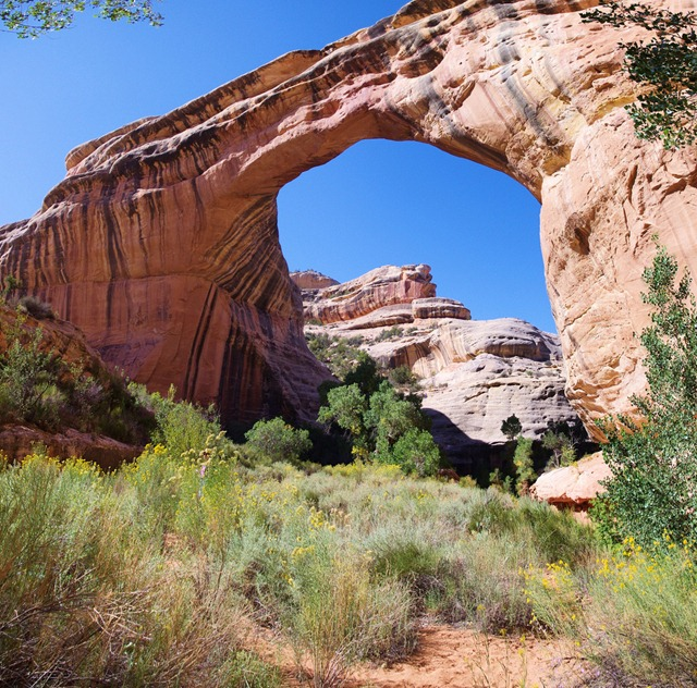 Sipapu Natural Bridge Trail, Natural Bridges National Monument, Utah, September 30, 2011