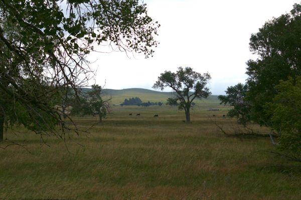 Nebraska Sandhills, August 2014
