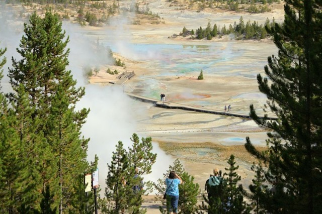 Porcelin Basin Trail, Norris Geyser Basin, Yellowstone National Park, Wyoming, August 19, 2014