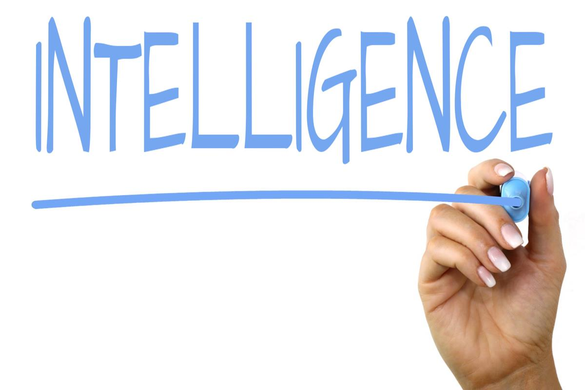 [#INTELLIGENCE] Article: «Circulation, not Cooperation: Towards a new understanding of intelligence agencies as transnationally constituted knowledge providers» (2021)