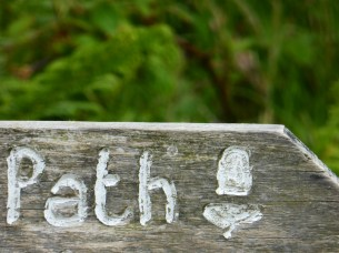 Exmoor Signs, part 2 5