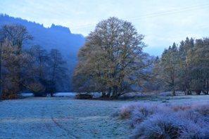 329-michael-edwards-beautiful-morning-on-the-way-to-dulverton-this-morning