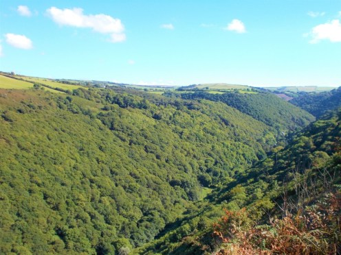 Heddon Valley