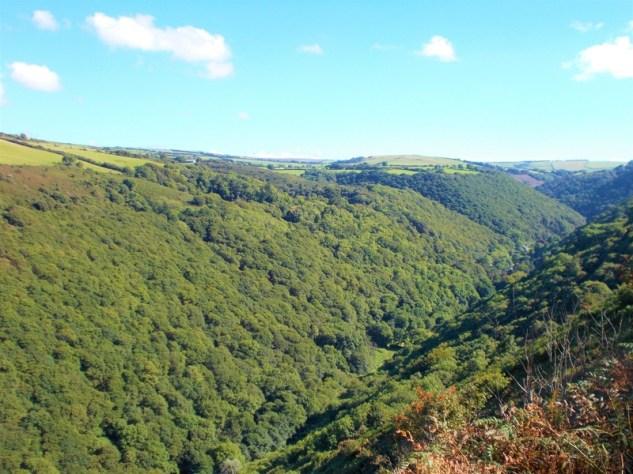 Heddon Valley