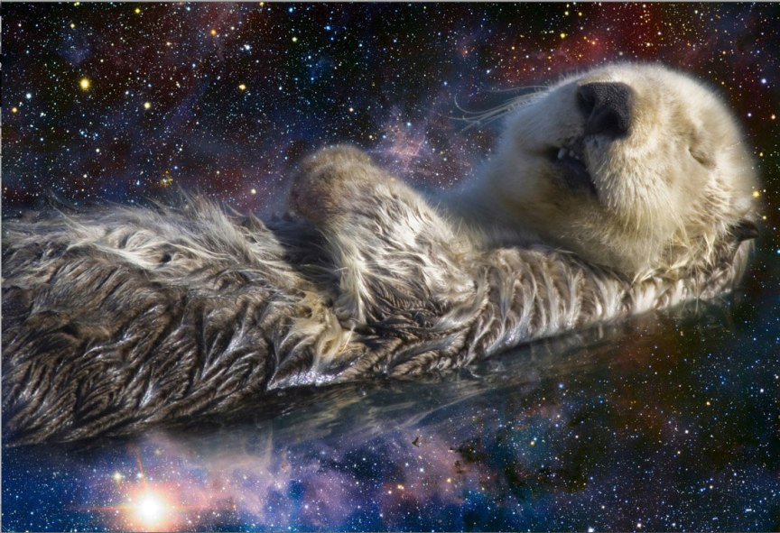 space otters