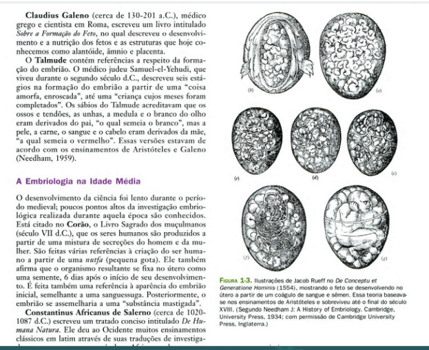 visoes-antigas-da-embriologia-humana2