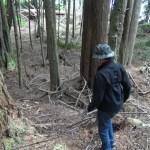 Alert Bay, BC- The Bigfoot 2017 Expedition