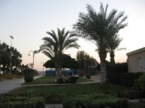 27. near the Dead Sea