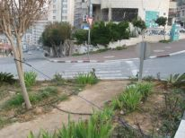 02. path for pedestrians