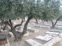 11. Christian graveyard