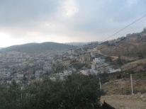 10. Palestinian landscape