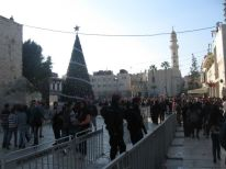 09. Christmas tree in Bethlehem with white banner