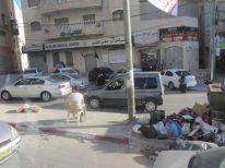 06. Ramallah