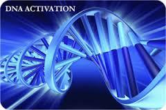 ativação do DNA