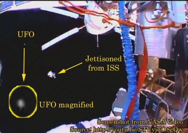 space bug near ISS