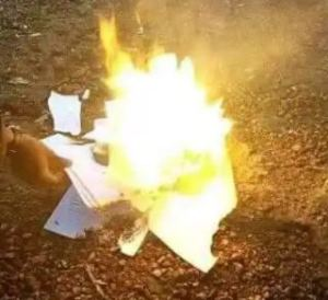 Graduate burns certificates