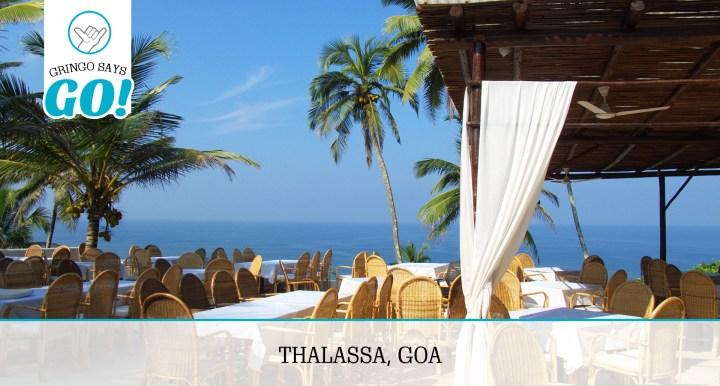 Gringo-Says-Go_Thalassa