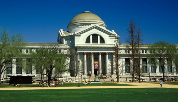 image-national%20museum%20of%20natural%20history%20-%20exterior%20on%20the%20national%20mall-7316
