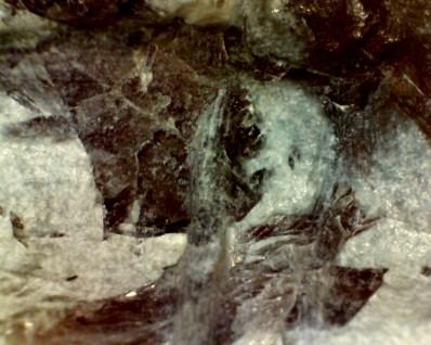 shangfishadditive-crystal1-1