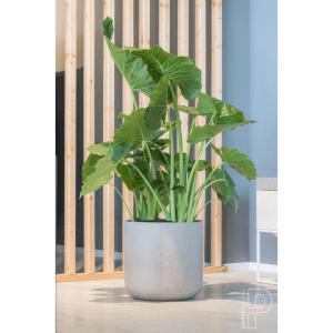 Fiber Clay Plant Pot