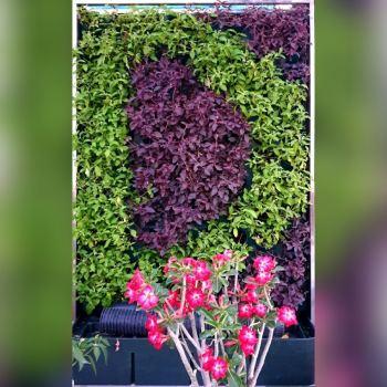 Moving Hedge | Vertical Garden