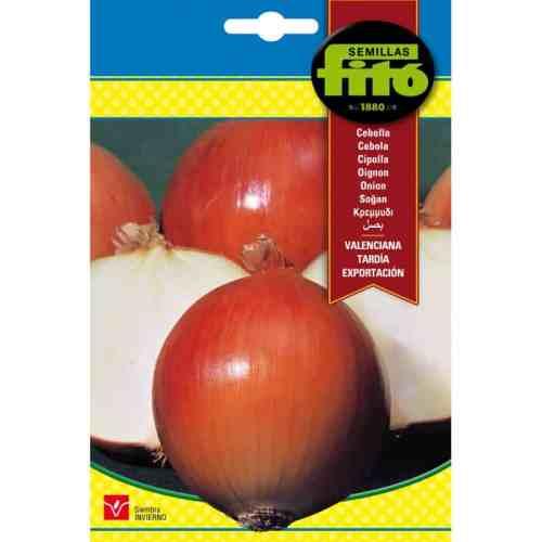 Fito Onion Valenciana Tardia De Exportaction Organic Seeds