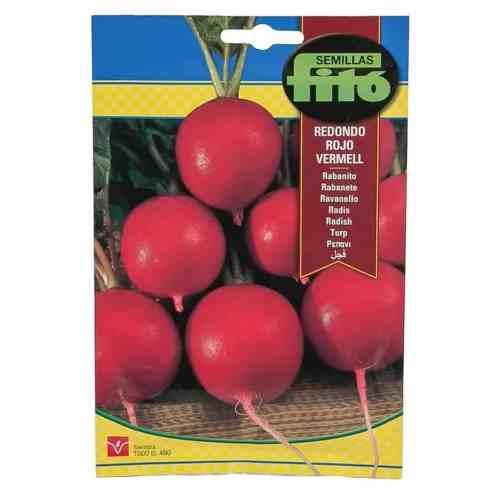Fito Radish Redondo Rojo Vermell