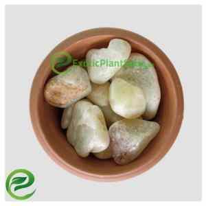 Pebbles Stones Marble White