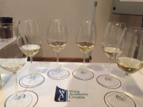 wine academy croatia wset Wine & Spirit Education Trust