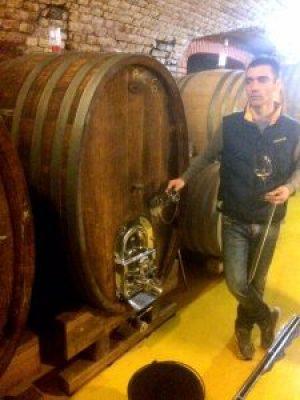 Kovacevic Wine Cellar