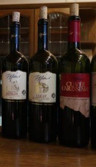Tiffans Merlot villány wine