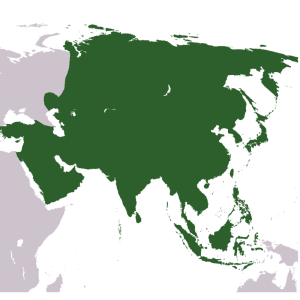 Asia Statistics and Facts