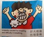 Pei Pa Koa for irritability