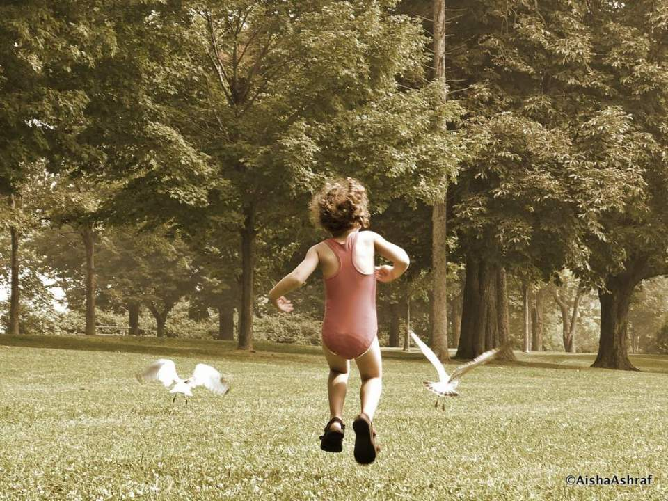 Child chasing gulls