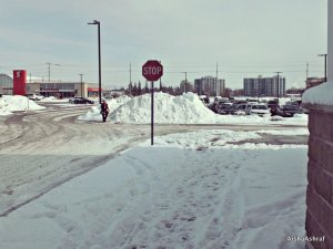 Piles of cleared snow in a plaza car park