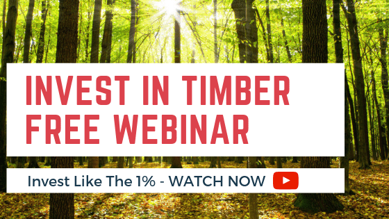How to invest in Timber - Free Webinar