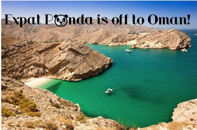 expat-panda-is-off-to-oman_6792701512