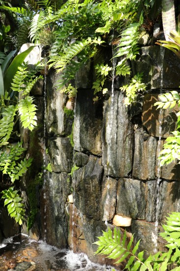 Waterfall, Longwood Gardens, Orchid Extravaganza